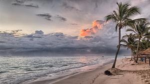 beach, dominican republic, caribbean